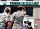 Najwi�kszy rosyjski bank dorzuca do kredytu hipotecznego... kota na dwie godziny