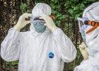 WHO: liczba zgon�w spowodowanych ebol� wzros�a do blisko 7 tys.