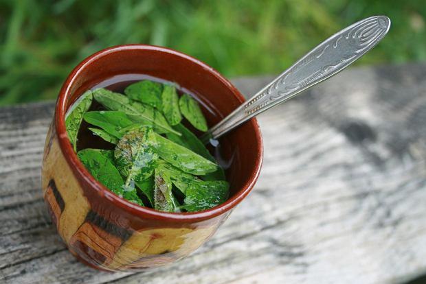 Mieszanki ziołowe - naturalna pomoc w odchudzaniu