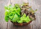 Sa�ata lodowa - zdrowa, smaczna i efektowna