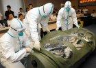 Ćwiczenia z umieszczania pacjentów w specjalnych kapsułach do przewozu zarażonych Ebolą, Shenzhen, Chiny