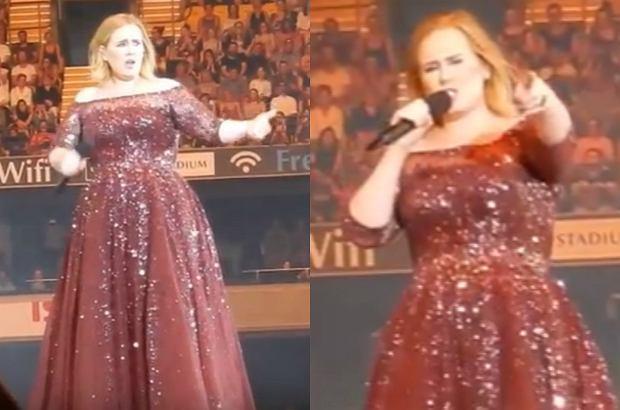 Adele nie spodobał się fakt, że podczas jej koncertu ochroniarz uspokajał fanów i prosił ich o nie wstawanie z miejsc. Gwiazda przerwała koncert i w dosadnych słowach powiedziała, co o tym myśli.