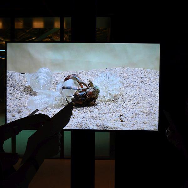 �my, kraby, fluidy - WRO Art Center w Hali Koszyki