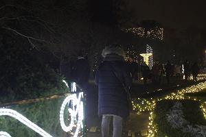 Niesamowita, świąteczna iluminacja Parku Oliwskiego [WIDEO]