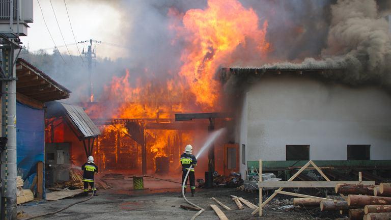 Wyrzucił niedopałek i wywołał ogromny pożar | Zdjęcie ilustracyjne