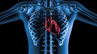 Zmiany w osierdziu mogą pojawić się wraz z zawałem serca, w przebiegu mocznicy lub niektórych schorzeń zaliczanych do wspólnej grupy, określanych mianem kolagenoz