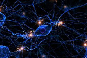 Kortyzol - jak oswoić hormon stresu?