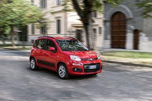 Wielkie zmiany u Fiata, na których zyskają Tychy. Produkcja Pandy ma wrócić do Polski