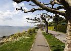Jezioro Bode�skie