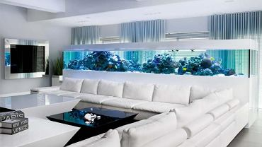 Największe w Polsce akwarium morskie z jednego fragmentu szyby wykonała firma Aqua Medic Poland. Skórzana kanapa (6x6 m) oraz trzy stoliki zostały zamówione (pod wymiar i kształt) we Włoszech i sprowadzone przez salon Mondocasa