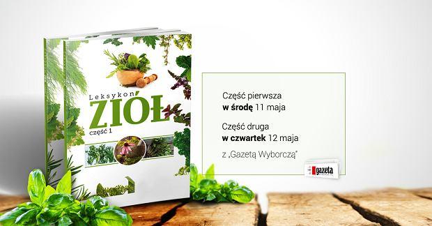 """""""Sanatoria i uzdrowiska""""                - książka z  """"Wyborczą"""""""