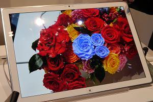 """CES 2013: Widzia�am 20"""" tablet Panasonika z rozdzielczo�ci� 4K. Robi wra�enie, ale dla kogo to sprz�t?"""