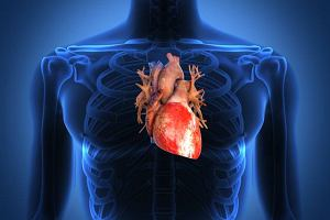 Przerost prawej komory serca (Przewlek�y zesp� p�ucno-sercowy)