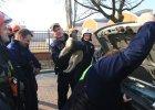 Szczeniak utkn�� pod mask� samochodu. Udana akcja ratunkowa Stra�y Miejskiej