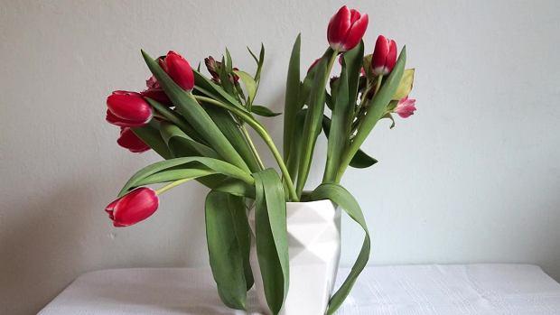 wazon, kwiaty