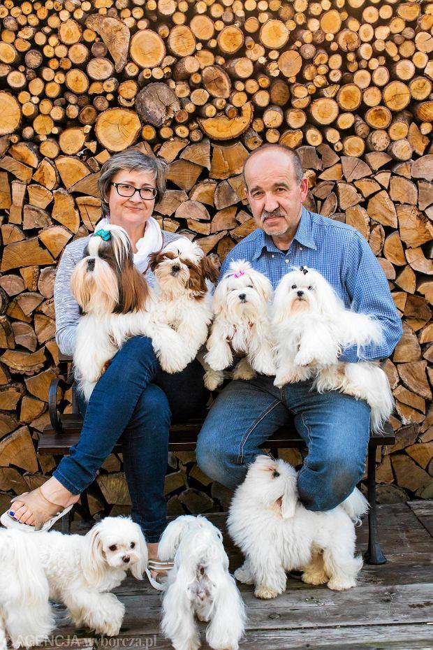 Hodowla psów rasowych - czy to się opłaca?