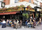 Piwo: królewska pinta w londyńskim pubie