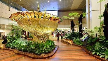 Ogrody na lotnisku Singapur-Changi