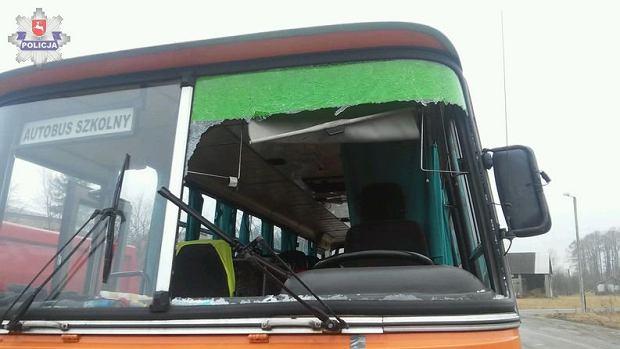 Kaczka wpadła przez szybę szkolnego autobusu. Dwie osoby poszkodowane