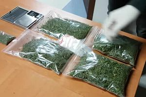Funkcjonariusze zabezpieczyli 170 gramów marihuany: