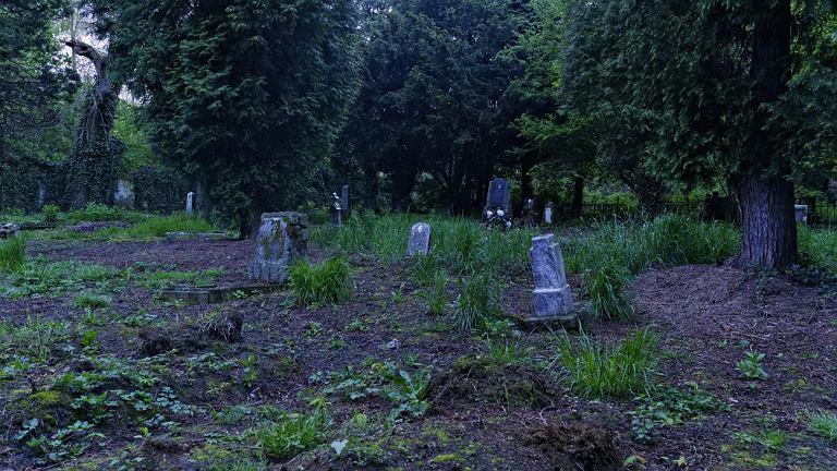 Zabytkowy cmentarz ewangelicki