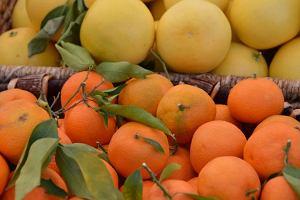 Cytryny, pomarańcze, pomelo i inne cytrusy. Czym się różnią, poza smakiem i wyglądem?