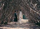 """Park Chan-wook, reżyser filmu """"Służąca"""": Wyjść z niewoli męskiego spojrzenia [ROZMOWA]"""
