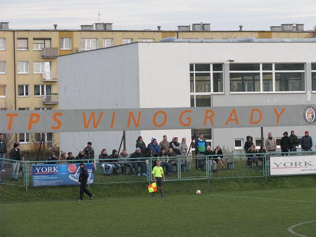 TPS Winogrady - Polonia Poznań