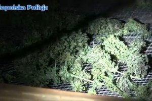 Policjanci zlikwidowali arsena� broni i zabezpieczyli du�� ilo�� narkotyk�w