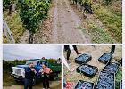 Mołdawia - niezapomniane przeżycie w winnicy Purcari