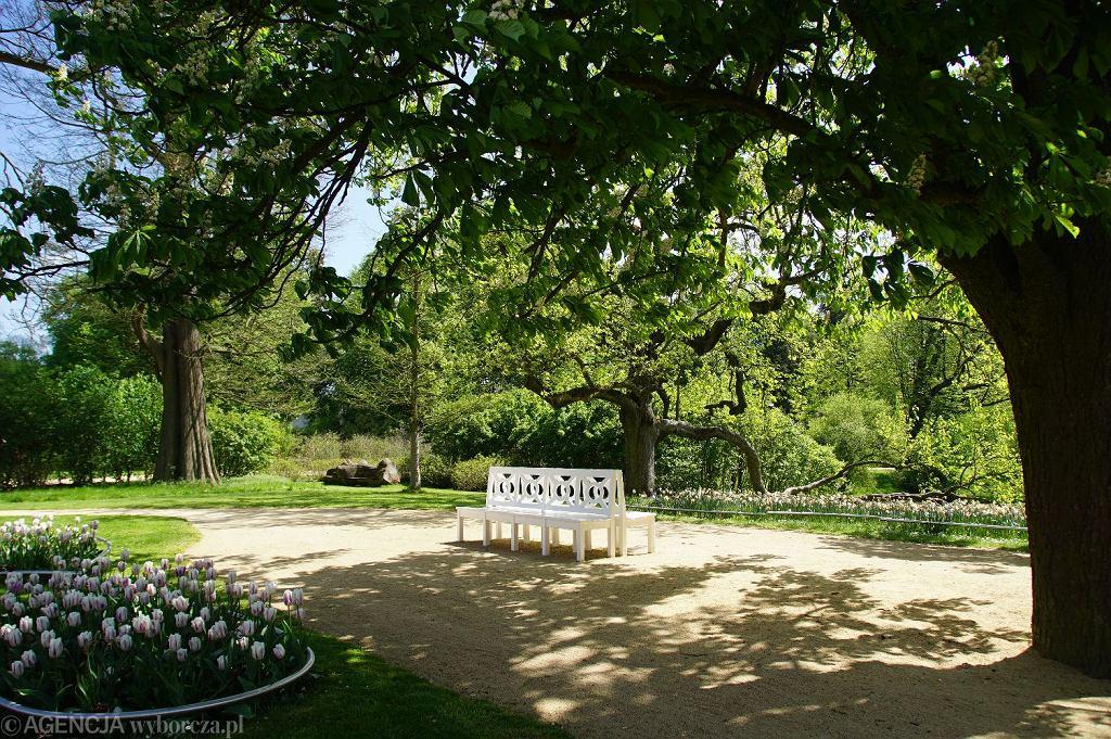 Park Mużakowski, Bad Muskau. Pałac i posiadłość księcia von Pücklera / Anna Kraśko/AG