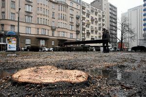 """Szokująca wycinka drzew w Warszawie. Policja tłumaczyła ludziom, że """"nic nie mogą zrobić"""""""
