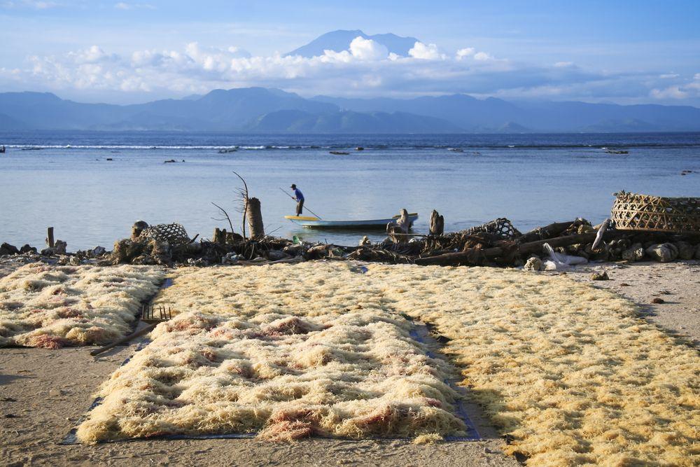 Gunung Agung (Indonezja) / fot. Shutterstock
