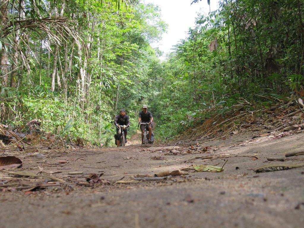 Dawid Andres i Hubert Kisiński tym razem na drodze w dżungli pomiędzy Manaus a Itaquatiara, miastem portowym nad Amazonką