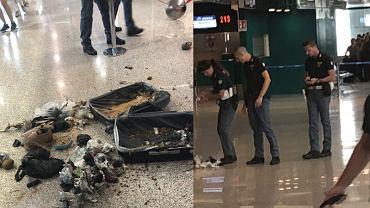 Tak policjanci w Rzymie rozbrajali bombę. Ludzie stali tuż obok wybuchających kokosów