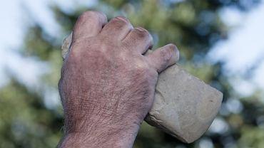 Korzystając z narzędzi, neandertalczycy rozłupywali kości zwierząt, by dostać się do szpiku