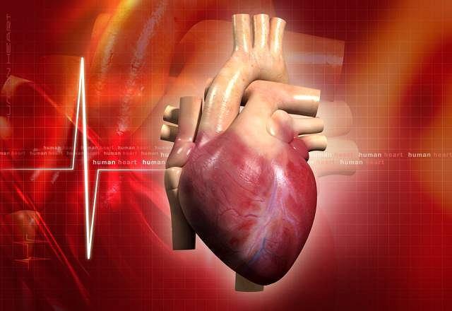 Znalezione obrazy dla zapytania Wrodzona choroba serca
