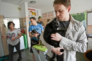 Kot ambasadorem Bydgoszczy. Promocja ratusza cienko miauczy