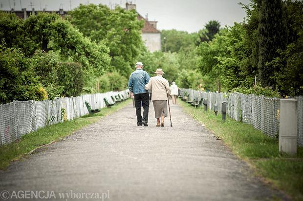Nowe zasady waloryzacji emerytur. Zyskają osoby z najniższymi świadczeniami [INFORMATOR]