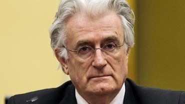 Radovan Karadżić został skazany za zbrodnie w Serbii