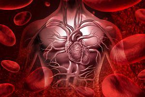 Enzym sposobem na rany