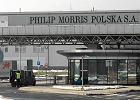 Limit wywozu papieros�w z Polski jednak si� nie zmienia. Wci�� dozwolone 800 sztuk