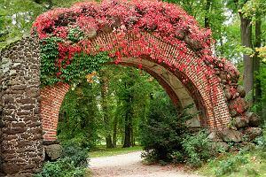 9 parków w Polsce idealnych na jesienne spacery