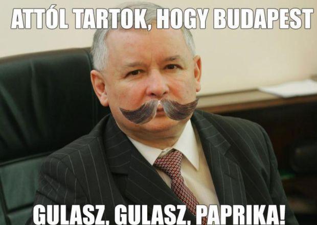 jarosław kaczyński,nie chcę budapesztu w warszawie, boję się budapesztu w warszawie
