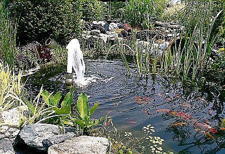 Fontanna to nie tylko ozdoba basenu, ale te� spos�b napowietrzania wody. �eby mog�a dzia�a�, potrzebna jest pompa z odpowiedni� dysz� fontannow�