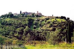 Montalcino i wino. Toskania od winnicy do winnicy