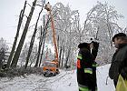 Małopolska: Ciągle ponad 10 tysięcy domów bez prądu