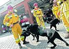 Strażacy z Haiti mają remizę na Targówku