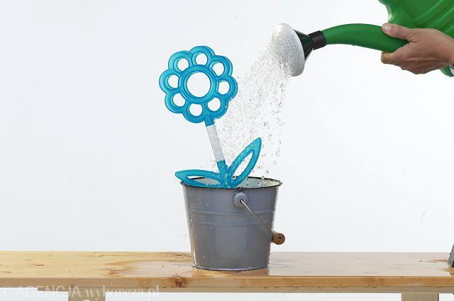 Fot. 1. Nawadnianie roślin na urlopie. Przed wyjazdem warto rośliny porządnie spłukać wodą