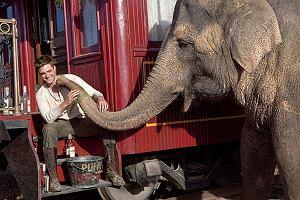Woda dla słoni